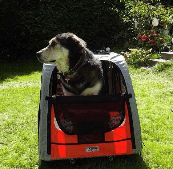 Mein Hund im Hundebuggy Comfort Wagon
